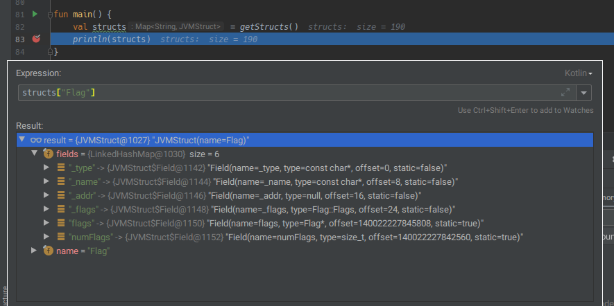 A screenshot of IntelliJ IDEA's debugger, showing information about the Flag struct